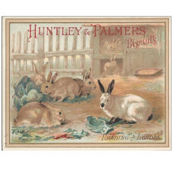 CHROMOS - HUNTLEY & PALMERS - Biscuits - Reading & Londres - Lapins(Ref : #0187386577)